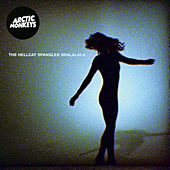The Hellcat Spangled Shalalala von Arctic Monkeys