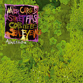 Water Curses by Animal Collective