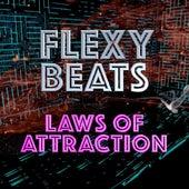 Laws of Attraction (Radio Edit) by Flexy Beats