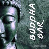 Epidemic Sound by Buddha-Bar