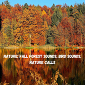 Nature: Fall Forest Sounds, Bird Sounds, Nature Calls fra Nature Sounds (1)