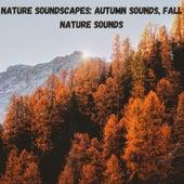 Nature Soundscapes: Autumn Sounds, Fall Nature Sounds fra Nature Sounds (1)