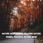 Nature Soundscapes: Relaxing Nature Sounds, Peaceful Nature Music fra Nature Sounds (1)