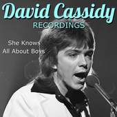 She Knows All About Boys David Cassidy Recordings by David Cassidy