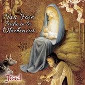 San José Padre en la Obediencia by Jésed