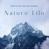 Meditation Healing Chakras: Nature Life and Mindfulness Therapy (Mental Relaxation Techniques) by The Buddha Lounge Ensemble