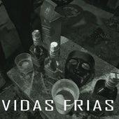Vidas Frias by Alcateia202
