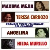 Grandes Voces Femeninas del Ecuador de Varios Artistas