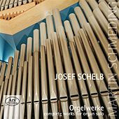 Schelb: Complete Works for Organ Solo by Martin Schmeding