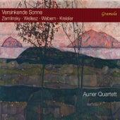 Versinkende Sonne by Auner Quartett
