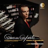 J.S. Bach:  Goldberg Variations, BWV 988 (Transcr. for Organ by Cameron Carpenter): Variatio 26 a 2 Clav. von Cameron Carpenter