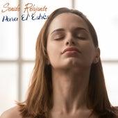 Sonido Relajante Para El Estrés by Música para dormir