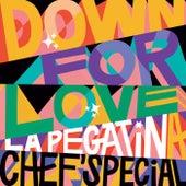 Down For Love van La Pegatina