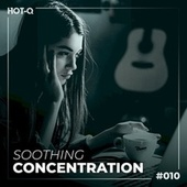 Soothing Concentration 010 von Various Artists