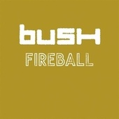 Fireball by Bush