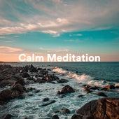 Calm Meditation by S.P.A