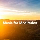 Music for Meditation de S.P.A