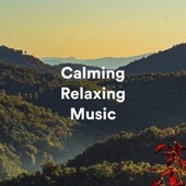 Calming Relaxing Music by S.P.A
