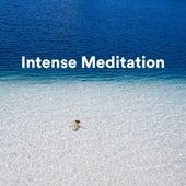Intense Meditation by S.P.A