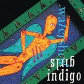 Watershed (Live) de Indigo Girls