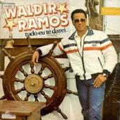 Tudo eu te darei by Waldir Ramos