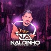O Menino Forrozeiro de Naldinho Araújo