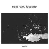 Cold Rainy Tuesday de Pedrini