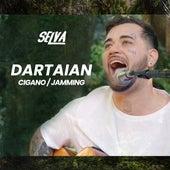 Cigano / Jamming von Dartaian