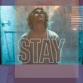 Stay (Slowed) by Taoufik Yatabaslam
