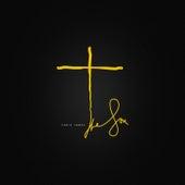 The Son by Chris Jones