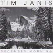 December Morning de Tim Janis