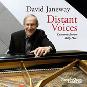 Distant Voices by David Janeway