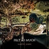 Felt So Much by Martyn Joseph
