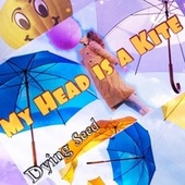 My Head Is a Kite by Dying Seed