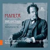 Mahler: Welt und Traum by Various Artists