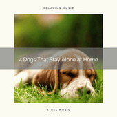 4 Dogs That Stay Alone at Home by Relaxmydog