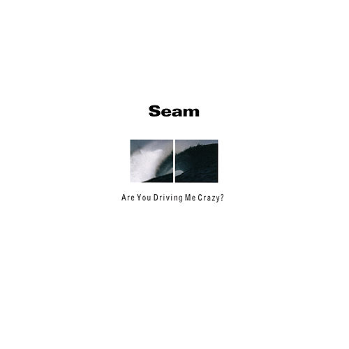 Are You Driving Me Crazy? by Seam