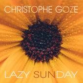 Lazy Sunday by Christophe Goze