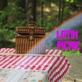 Latin Picnic Vol. 4 by Various Artists