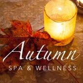 Autumn Spa & Wellness de Royal Philharmonic Orchestra
