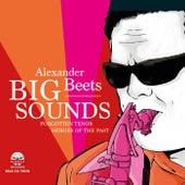 Big Sounds de Alexander Beets