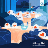 Like the Sky, or Something Else by Sleepy Fish