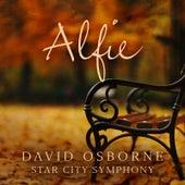 Alfie by David Osborne