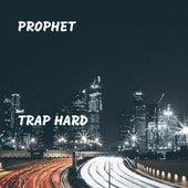 Trap Hard by Prophet
