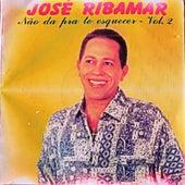 Não Dá pra Te Esquecer, Vol. 2 von José Ribamar