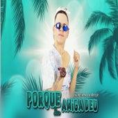 Porque Sua Amiga Deu (feat. MC Levin) de Luanzinho do Recife