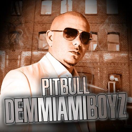 Dem Miami Boyz de Pitbull