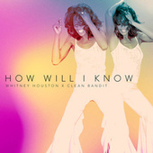 How Will I Know de Whitney Houston
