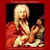 Vivaldi: the Four Seasons - String Concerto by Vivaldi Collegium Orchestra