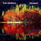 Introspect by Sven Sundberg